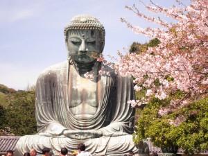 Kamakura Buddha_spring